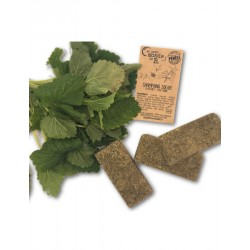Shampoing solide Petit Herbier 15g